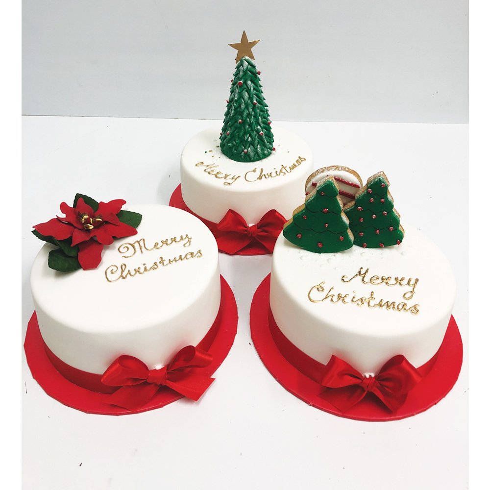 Christmas Iced Fruit Cake