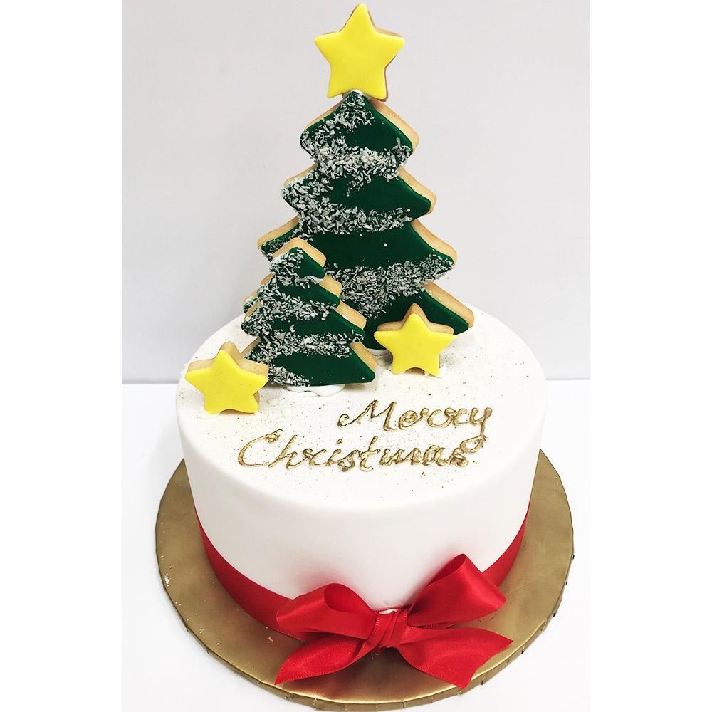 Christmas Iced Fruit Cake